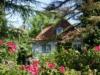 Villa zwischen Golfclub und Kieler Förde - Villa in verwunschenem Garten
